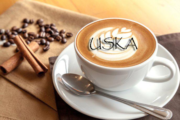 Logotipo Uska 2018